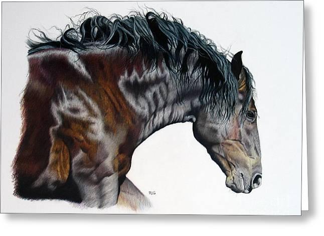Bellus Equus Greeting Card