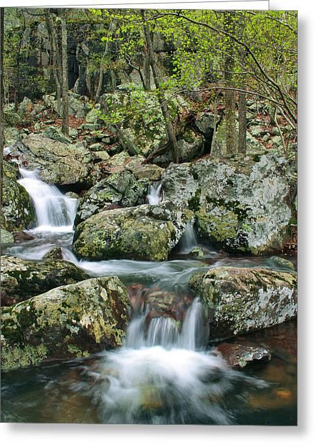 Below Mina Sauk Falls 1 Greeting Card by Greg Matchick