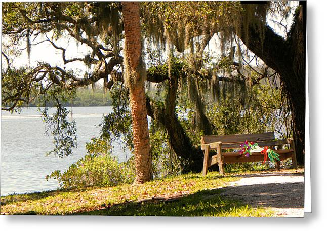 Bench By The Lake Greeting Card by Rosalie Scanlon