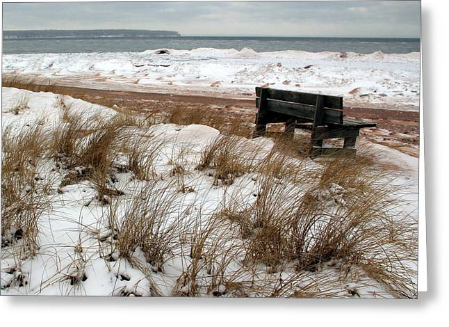 Bench In Winter Greeting Card