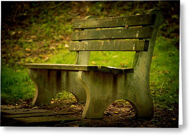 Park Benches Greeting Cards - Bench Greeting Card by Shane Holsclaw