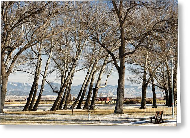 Greeting Card featuring the photograph Bench With A View by Sue Smith