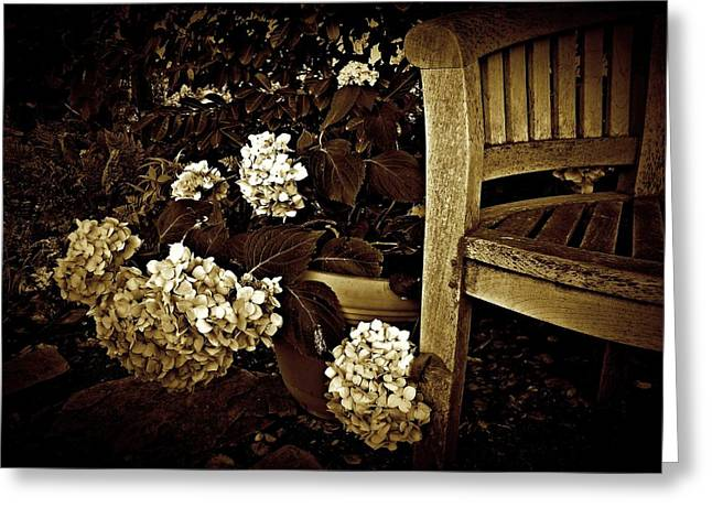 Bench With Hydrangeas Greeting Card
