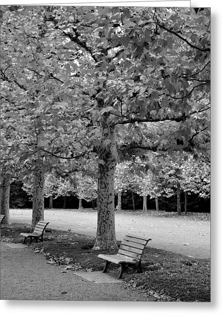 Benches In The Park Greeting Card
