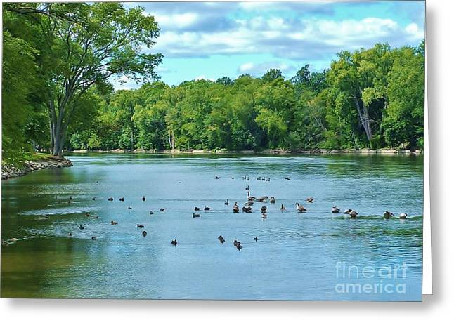 The Bend In The River   Indiana  Summer Greeting Card by Rory Cubel