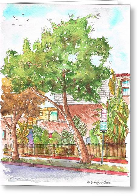 Bended Tree In Horn Drive - Hollywood Hills - Los Angeles - California Greeting Card