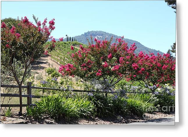 Benziger Winery In The Sonoma California Wine Country 5d24493 Greeting Card by Wingsdomain Art and Photography