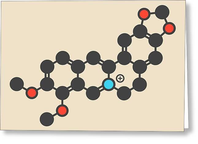 Berberine Alkaloid Molecule Greeting Card by Molekuul