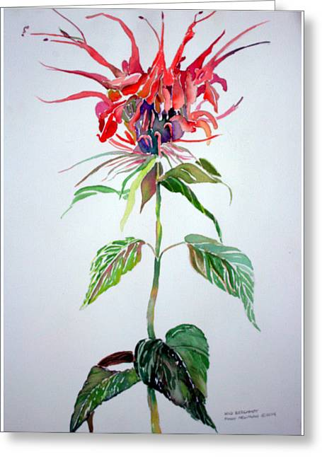 Bergamot Greeting Card by Mindy Newman