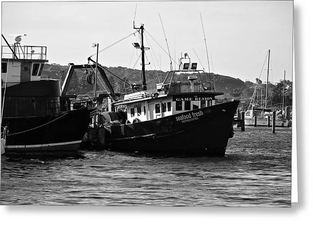 Bermagui Boats Greeting Card by Marty  Cobcroft
