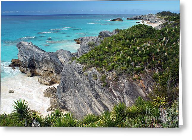 Bermuda Beach Greeting Card