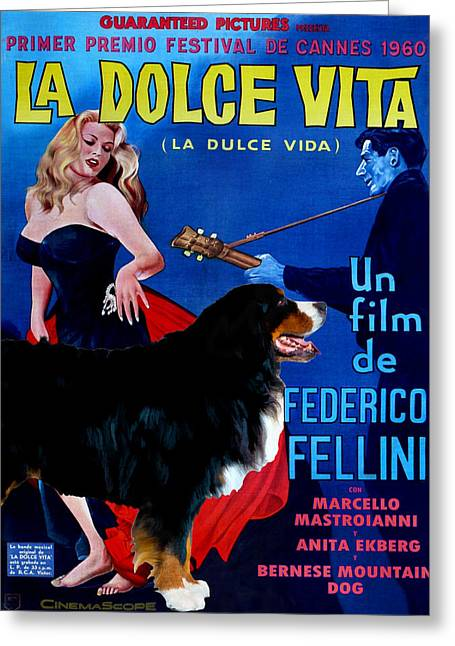 Bernese Mountain Dog Art Canvas Print - La Dolce Vita Movie Poster Greeting Card