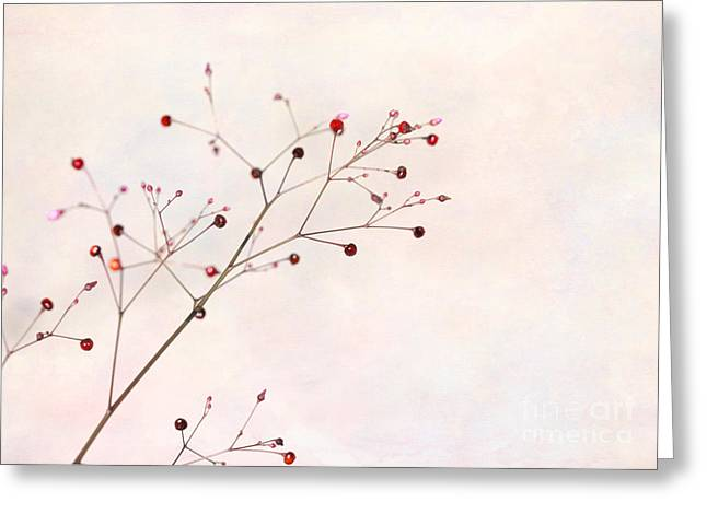 Berries On A Branch Greeting Card by Sabrina L Ryan