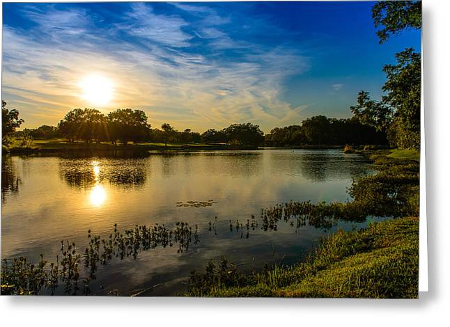 Berry Creek Pond Greeting Card