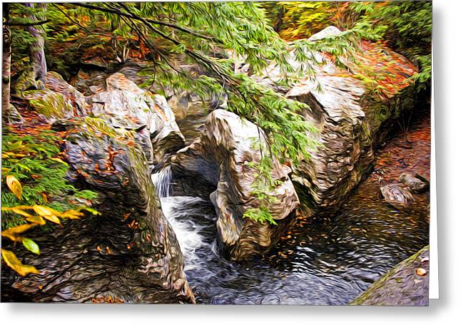 Beside The Water Greeting Card by Bill Howard