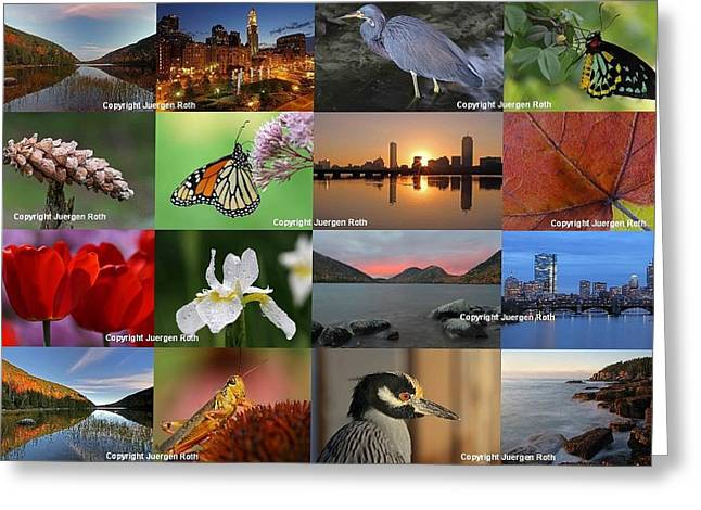Best Photography Of The Year 2012 Greeting Card by Juergen Roth