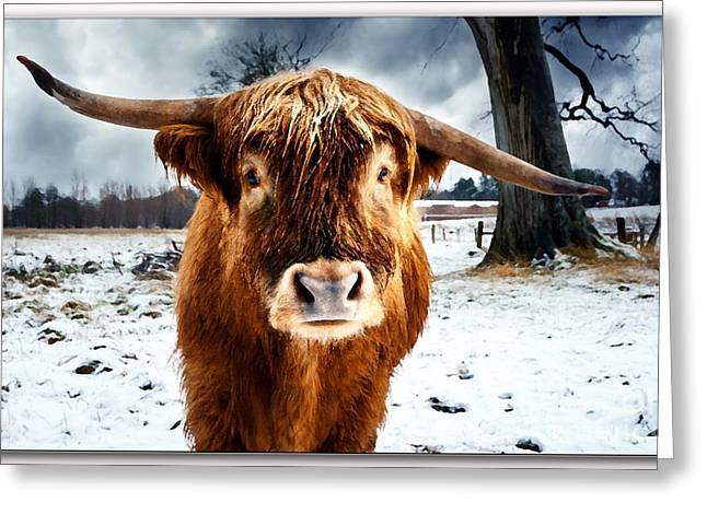Betty The Cow Painting Greeting Card by Marvin Blaine
