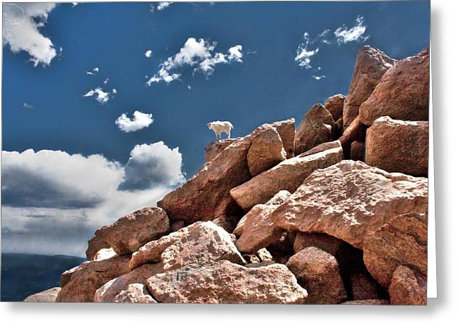 Between A Rock And A Hard Place Greeting Card by Tejas Prints