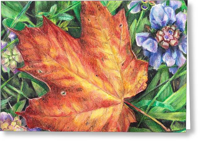 Between Summer And Fall Greeting Card by Shana Rowe Jackson