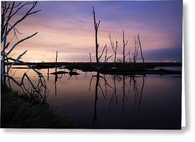 Between Two Worlds By Denise Dube Greeting Card
