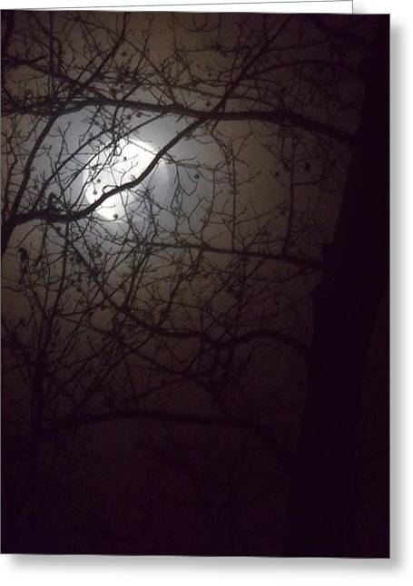 Greeting Card featuring the photograph Beware The Rougarou Moon by John Glass