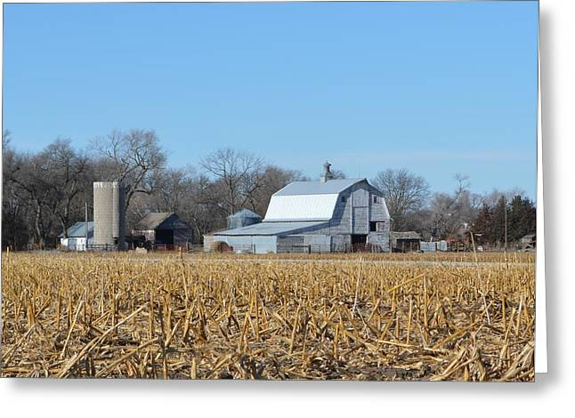 Beyond The Cornfield Greeting Card