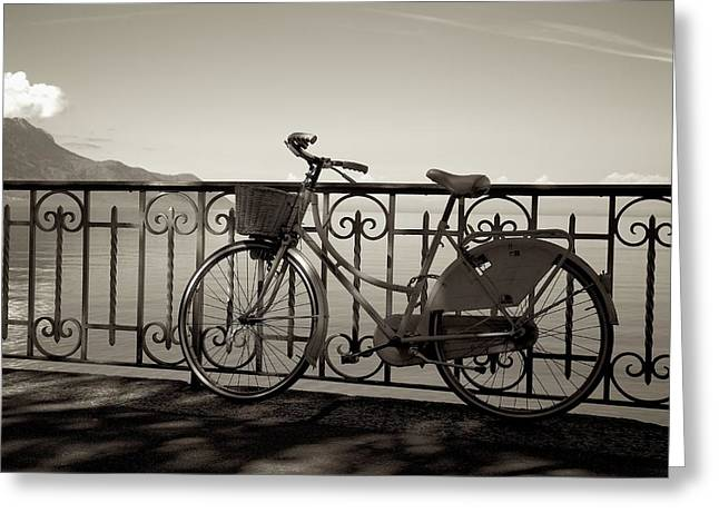 Bicycle Basket Fence Greeting Card
