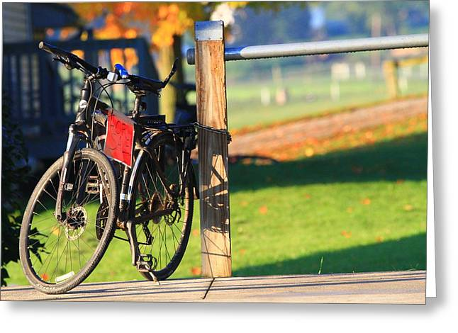 Bicycle For Sale Greeting Card
