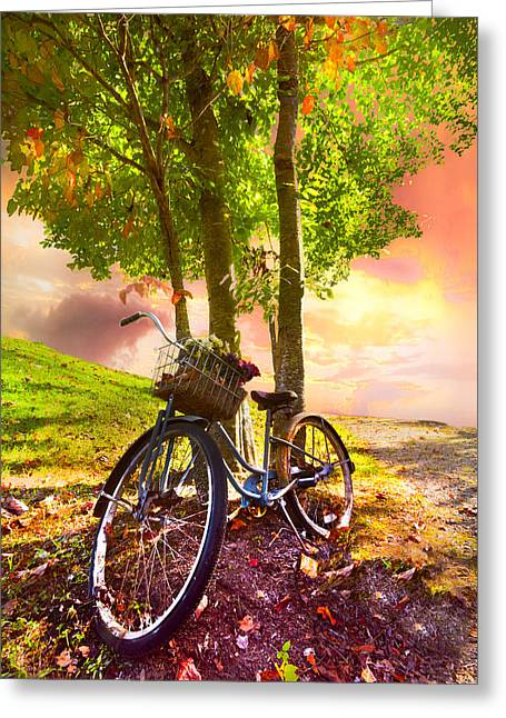 Bicycle Under The Tree Greeting Card