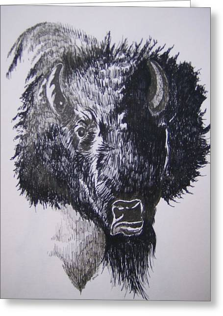 Big Bad Buffalo Greeting Card by Leslie Manley