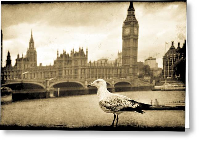 Big Ben And The Seagull Greeting Card