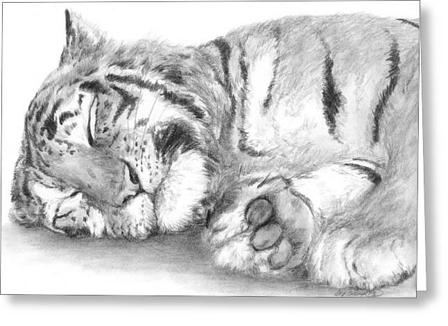 Big Cat Nap Greeting Card