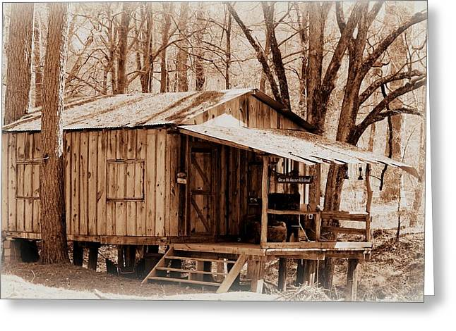 Big Cypress Cabin Greeting Card by Betty Northcutt