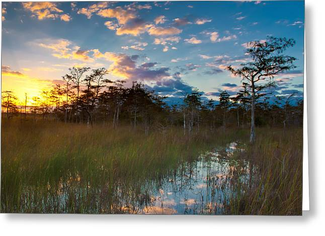 Big Cypress Sunrise Greeting Card by Rich Leighton