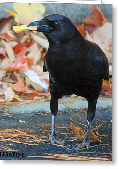 Big Daddy Crow Leaf Picker Greeting Card by Lesa Fine