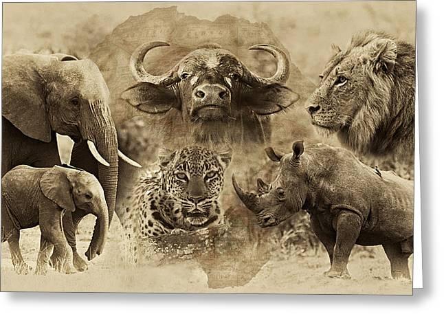 Big Five - Untamed Africa Greeting Card by Basie Van Zyl