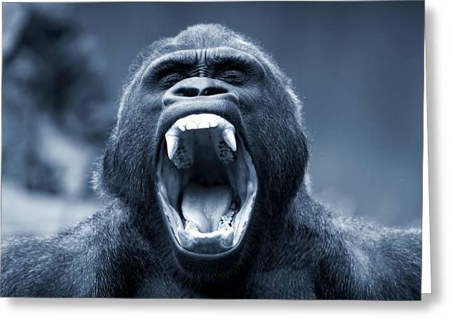 Big Gorilla Yawn Greeting Card