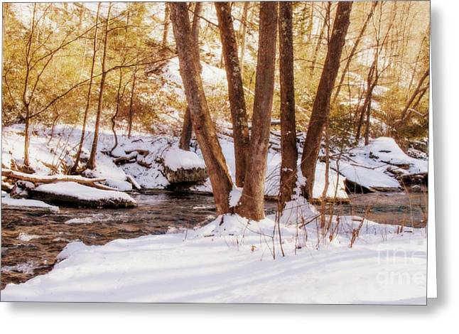 Big Gunpowder Falls River 1 Greeting Card