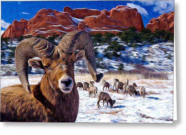 Big Horn Sheep At The Garden Greeting Card by John Hoffman