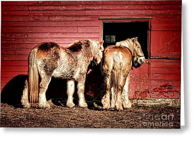Big Horses Greeting Card by Olivier Le Queinec