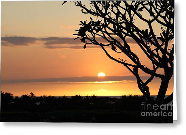 Big Island Sunset All Profits Go To Hospice Of The Calumet Area Greeting Card