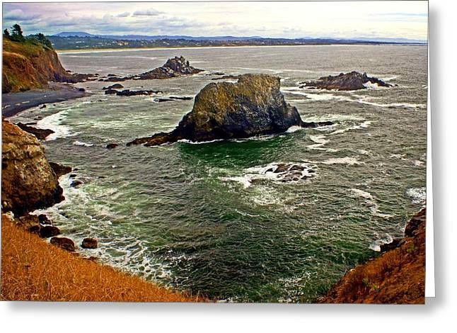 Big Rock Beach Greeting Card by Marty Koch