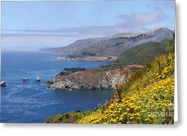 Big Sur Coastline By Diana Sainz Greeting Card by Diana Sainz