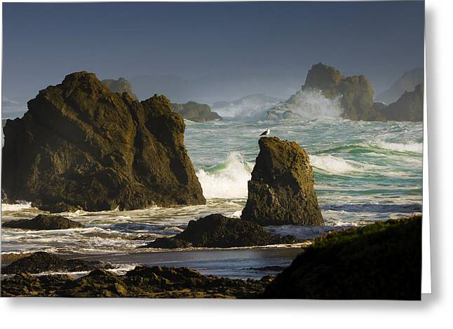 Big Sur Kind Of Morning Greeting Card by Kandy Hurley