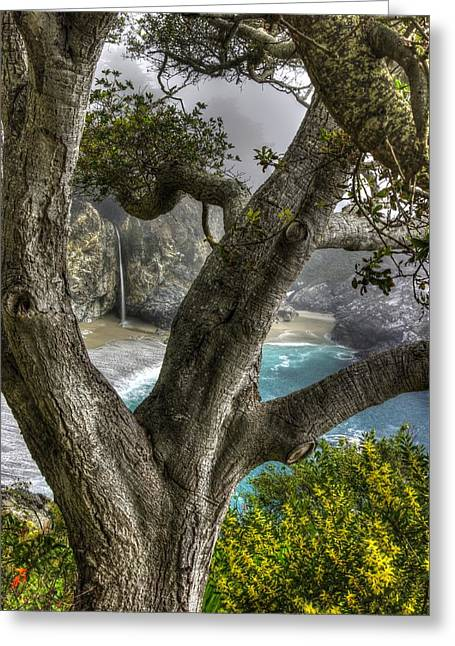 Big Sur Mc Way Falls At Julia Pfeiffer State Park-1 Central California Coast Spring Early Afternoon Greeting Card