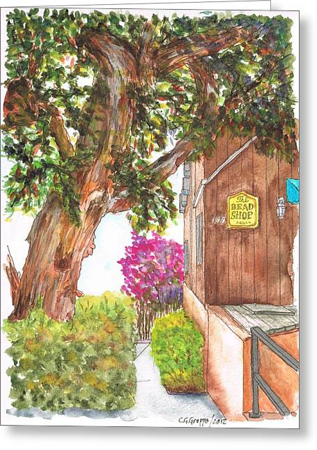 Big Tree At The Bead Shop, Laguna Beach, California Greeting Card