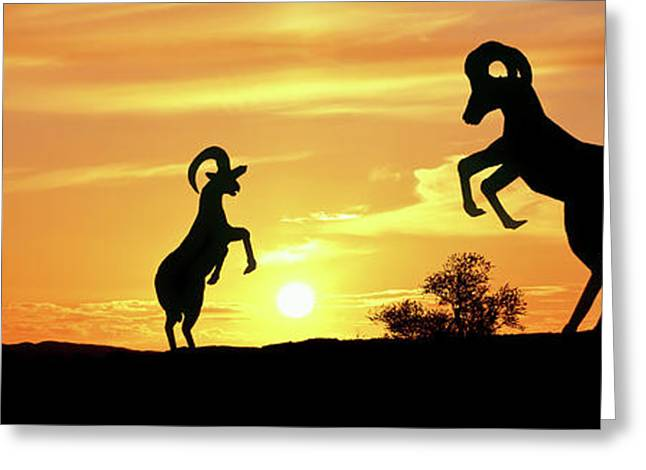 Bighorn Sheep Sculptures At Sunrise Greeting Card by Panoramic Images