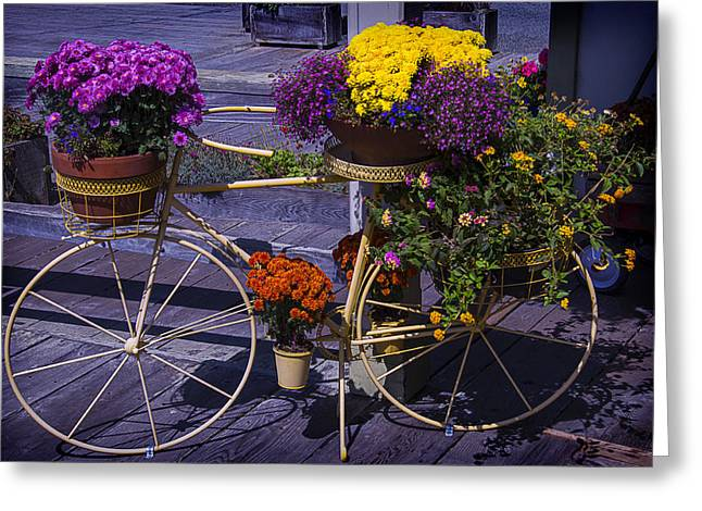 Bike Planter Greeting Card by Garry Gay