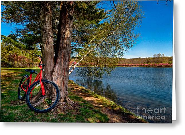 Biking To Horseshoe Lake Greeting Card