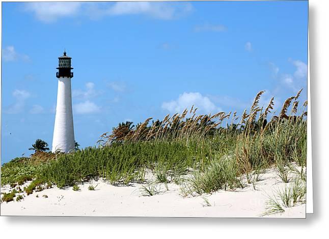 Bill Baggs Lighthouse Greeting Card by Carol Groenen